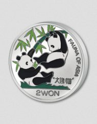 145-image-panda-2000