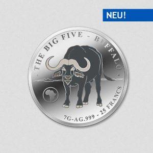 Big Five - Buffalo - Silbermünze - Numiversal